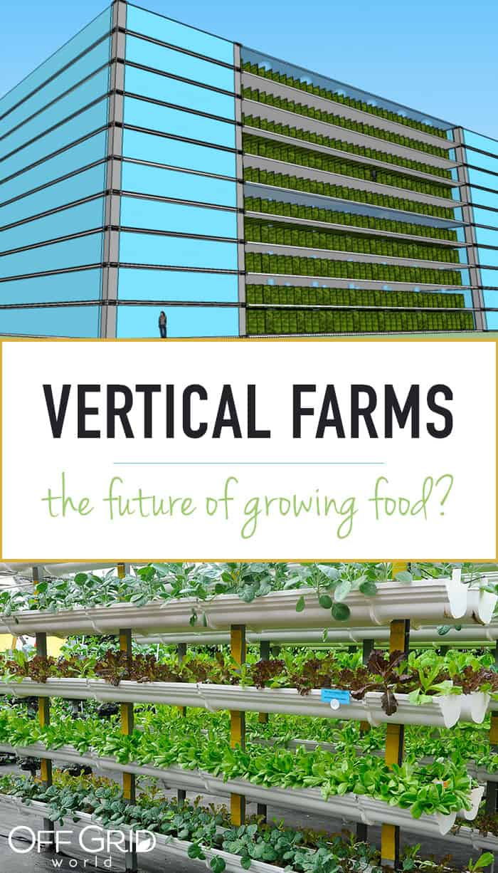 Vertical farming - the future of growing food