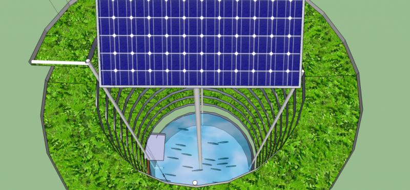 Solar powered aquaponic system