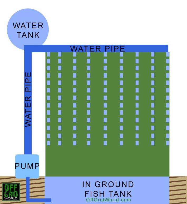 Vertical aquaponics layout