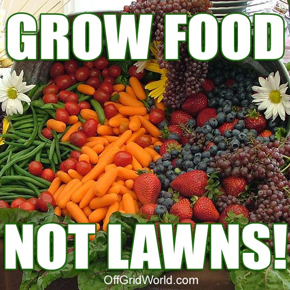 places in this free country to grow your own food in your own yard