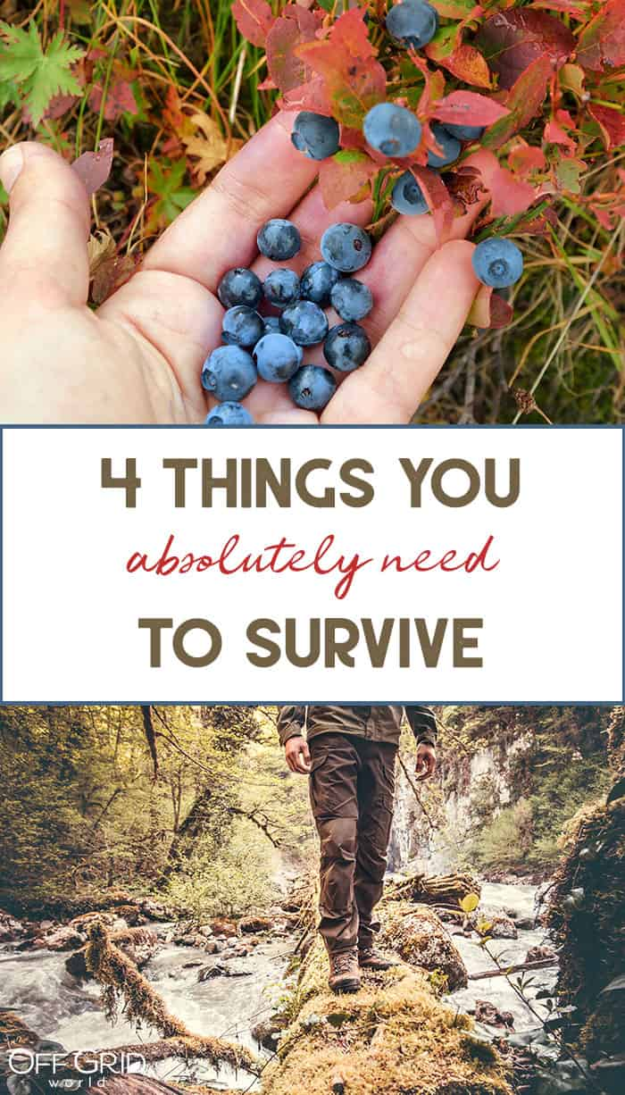 Things you need to survive