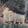 """Oregon Couple Builds Norwegian Style """"Stabbur"""" Log Cabin for $100"""