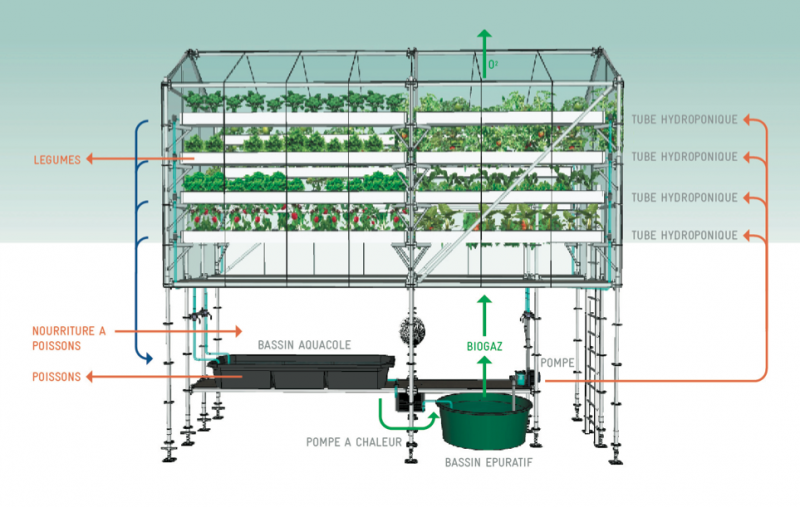 Urban Farm Unit Diagram