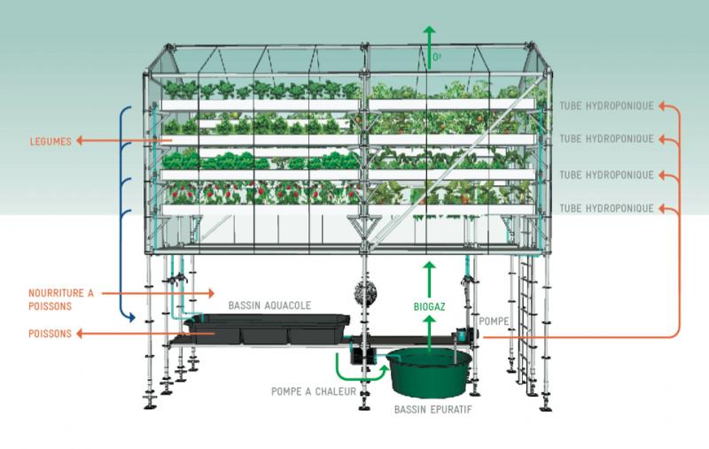 Urban Farm Unit Diagram
