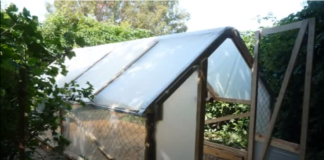 cheap greenhouse