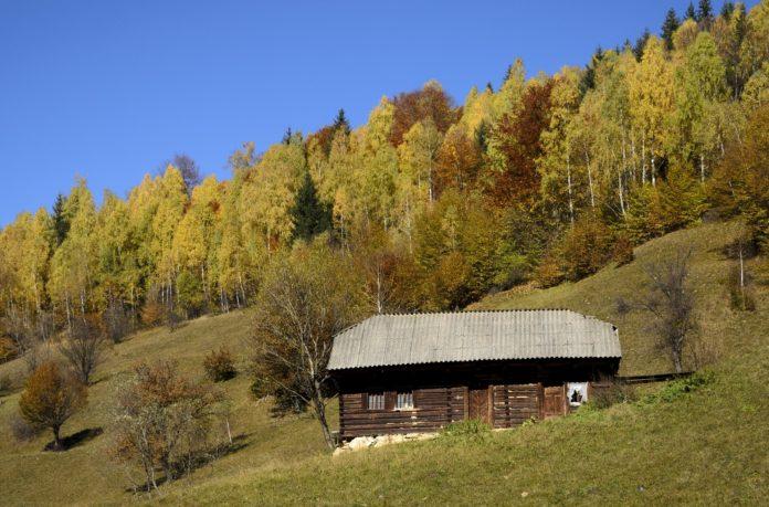 log-cabin-1030959_1920