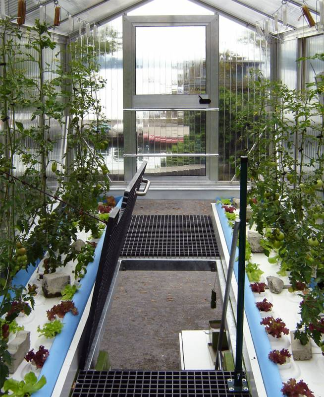 Urban farm unit Greenhouse Shipping Container