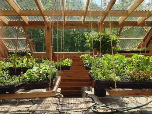Sheltered Greenhouse Hanging Shelves