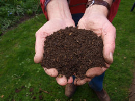 compost for heat