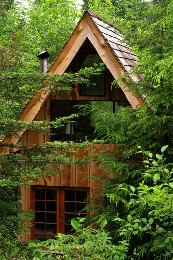 Brian-Schulz-Tiny-Japanese-Forest-House-2