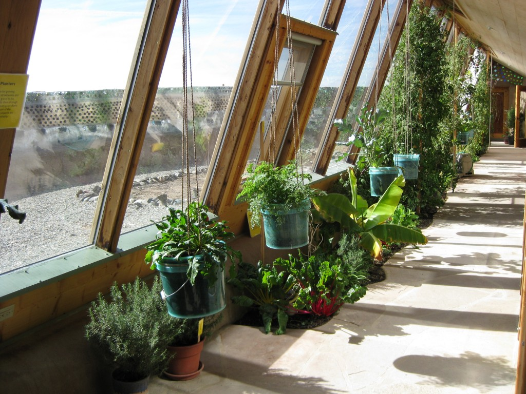 Earthship Inside The Greenhouse