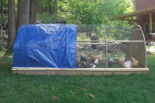 How To Make a Chicken Tractor