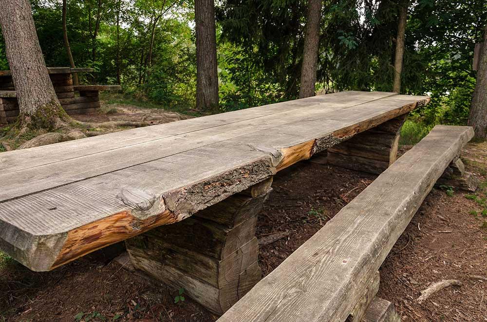 Log table and bench