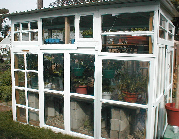 greenhouse-from-windows