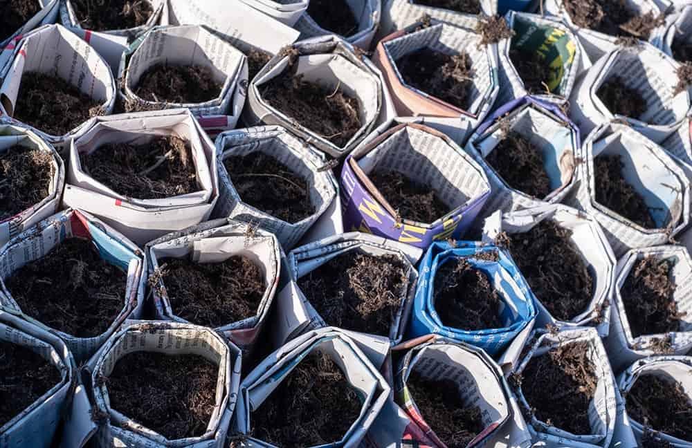 Newspaper seed pots