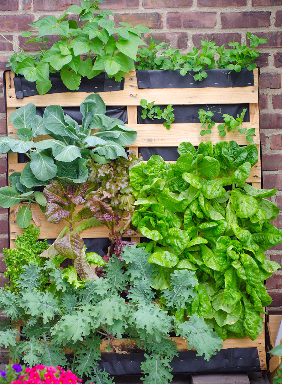 Upcycle Old Pallets To Make Beautiful Vertical Gardens Off Grid World