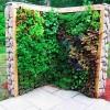Herb & Salad Wall Vertical Garden