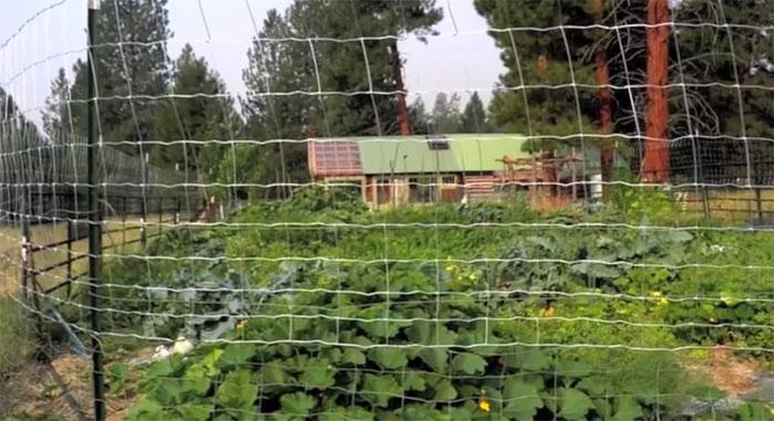 solar-montana-cabin4