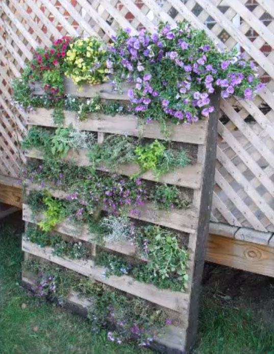 Upcycle old pallets to make beautiful vertical gardens for Vertical pallet garden
