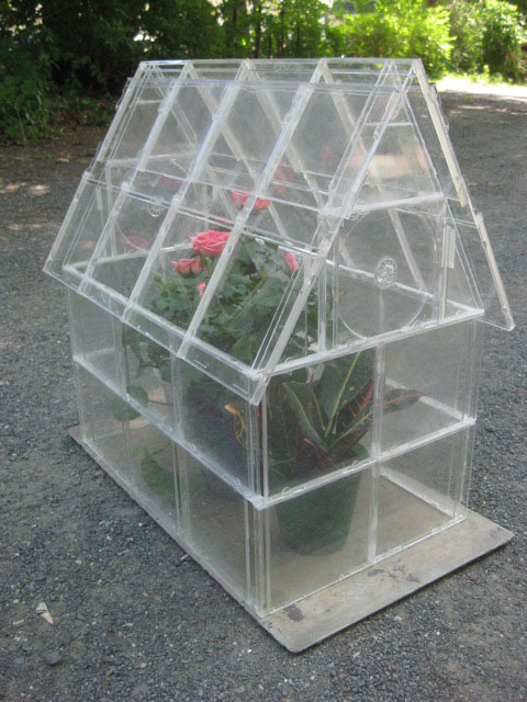 DIY mini greenhouse