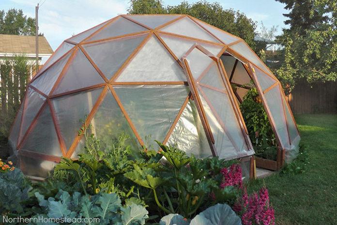 Cheap DIY greenhouse