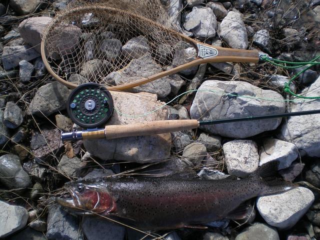 fishing-209150_640