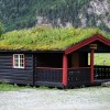 4 Best Reasons To Grow a Living Roof! Beautiful, Beneficial, Efficient, Green Living Rooftops