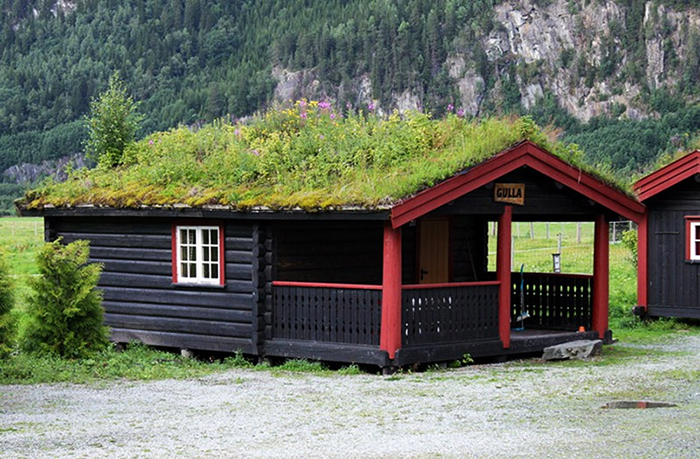 Green roof in Norway
