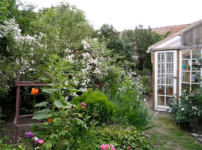 home greenhouse couple builds gorgeous greenhouse from old windows pallets off