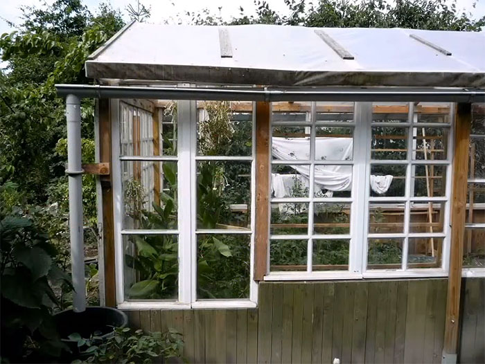 Greenhouse from old windows and pallets