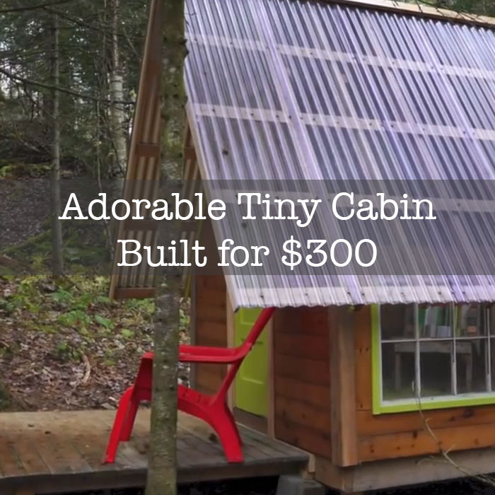 Small Cabins Diy Joy Studio Design Gallery Best Design