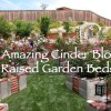 12 Amazing Cinder Block Raised Garden Beds