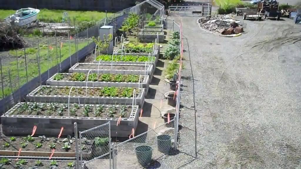 Raised garden beds made with cinder blocks