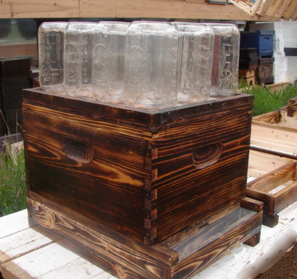 Awesome diy mason jar beehive - How to build a beehive in easy steps ...