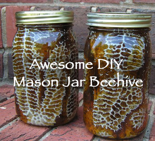 If You Are Ready To Take The Plunge Into Beekeeping Check Out This Cool DIY Project From Remove And Replace By Placing Mason Jars On Your Bee Box