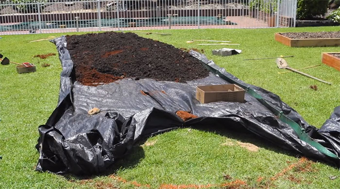 lawn-permaculture5