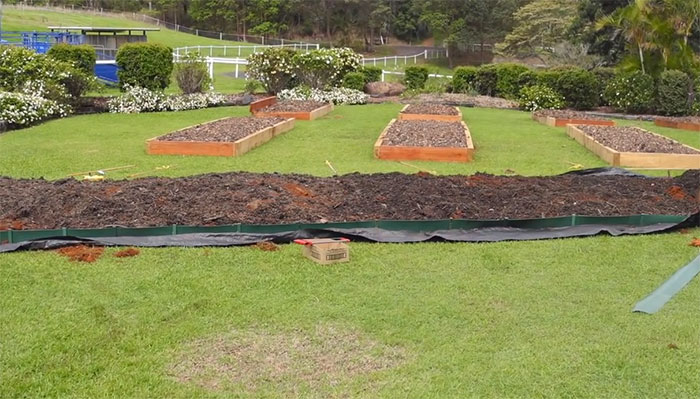 lawn-permaculture6