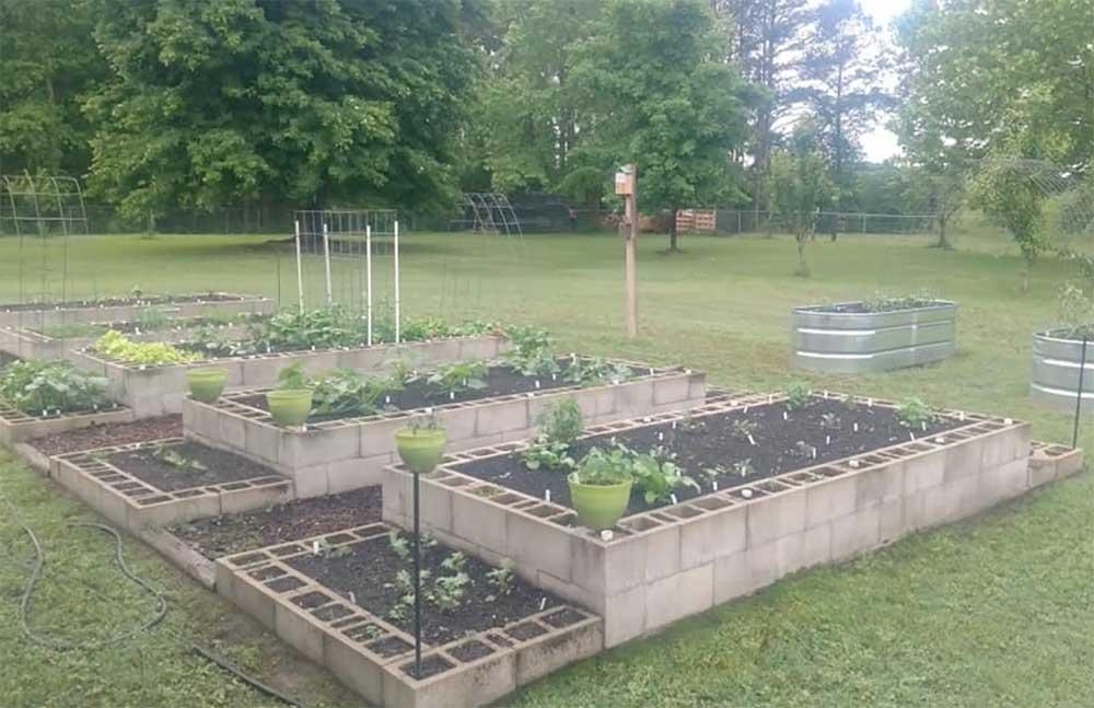 Cinderblock raised garden
