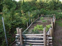 Log garden bed