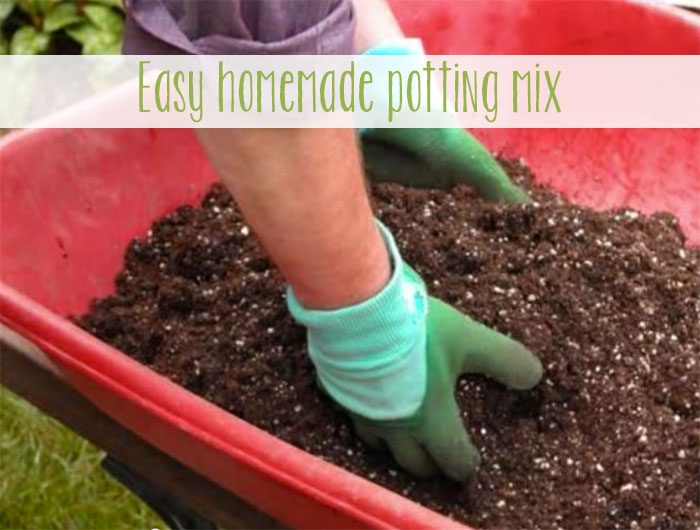 Inexpensive Homemade Potting Mix
