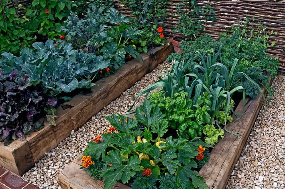 Garden beds made of railroad ties