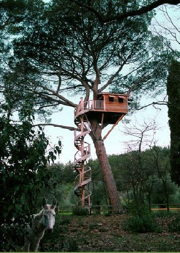 Treehouse cabin