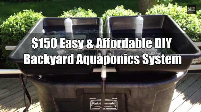 Delicieux $150 Easy U0026 Affordable DIY Backyard Aquaponics System