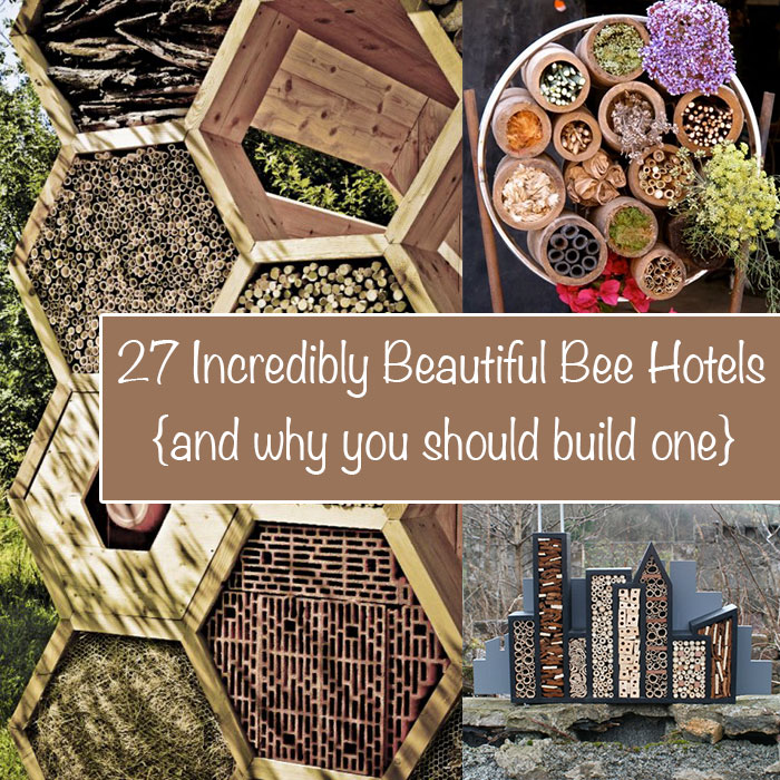 bee-hotel-feat