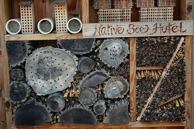 DIY bee hotel