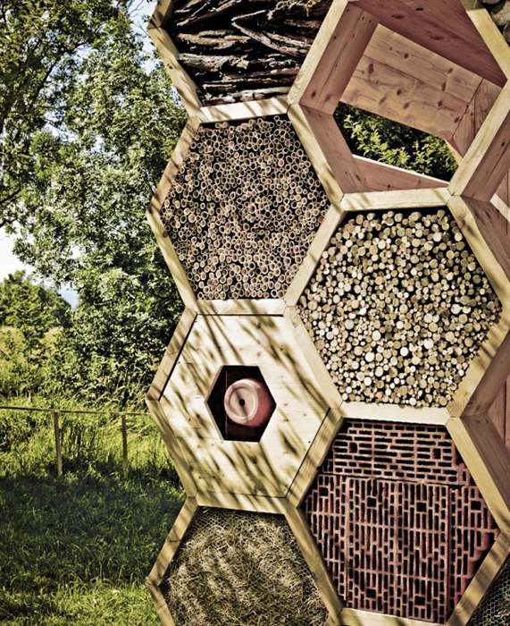 Honeycomb bug hotel
