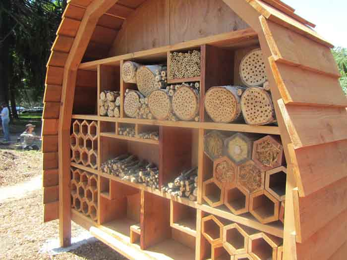 Bee hotel in a park