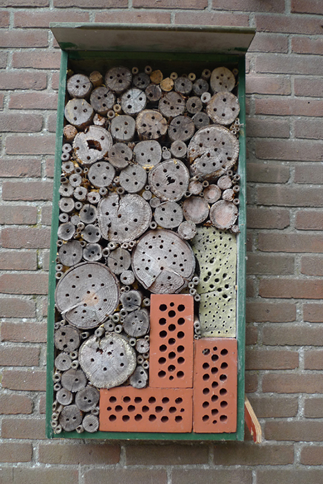 Bee hotel mounted on a wall