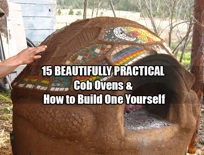 15 BEAUTIFULLY PRACTICAL Cob Ovens & How to Build One Yourself