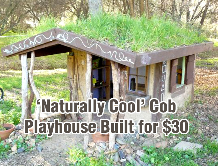 Cob Playhouse Feat
